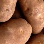 bulves1