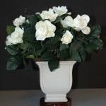 gardenijos