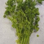 petroselinum-crispum-petrazole