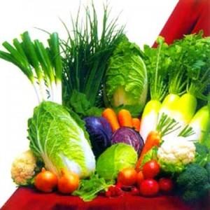 Daržovių derlius
