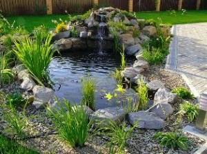 Dekoratyviniai lauko baseinai viskas apie sod ir namus for Imagenes de estanques caseros