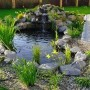 Dekoratyviniai lauko baseinai
