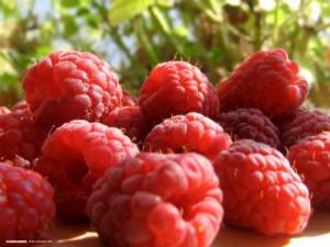 raspberry-1600