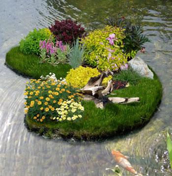 dekoratyvinis tvenkinys