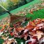 Užgriuvę rudeniniai darbai