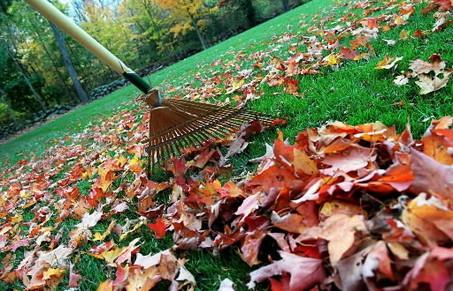 rudeniniai darbai