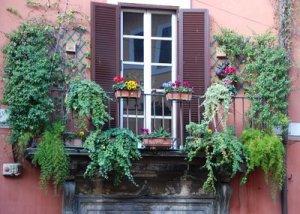 zydintis balkonas