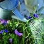 Sodininkystės privalumai