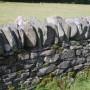 Akmenys sode gali tapti puošmena