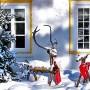 Žieminės sodo dekoracijos