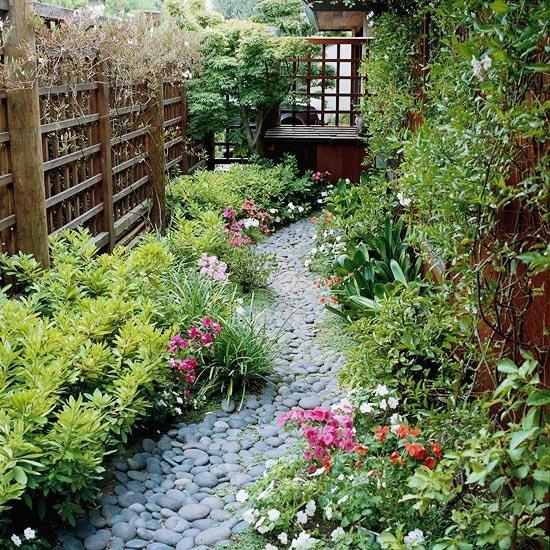 akmenuku takelis geles augalai tvora