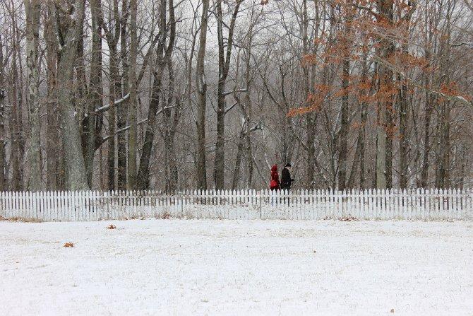 tvora veidrodziai ziema